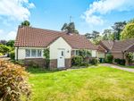 Thumbnail for sale in Maple Grove, Langwood Gardens, Watford