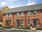 "Thumbnail to rent in ""Wilford"" at Butt Lane, Thornbury, Bristol"