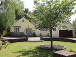 Thumbnail for sale in Ashley Heath, Ringwood, Hampshire