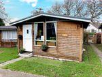 Thumbnail to rent in Harepath Hill, Seaton, Devon