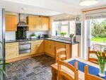 Thumbnail to rent in Godfrey Close, Radford Semele, Leamington Spa