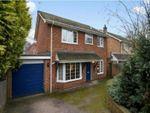 Thumbnail to rent in Woking, Surrey