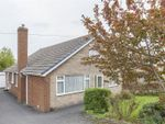 Thumbnail to rent in Harehill Crescent, Wingerworth, Chesterfield