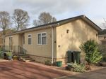 Thumbnail to rent in Mill House Park, Crieff