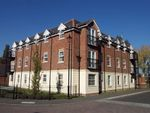 Thumbnail to rent in Mandarin Drive, Newbury