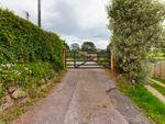 Thumbnail for sale in Ham Lane, Shaldon, Teignmouth