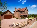 Thumbnail to rent in Trinity Hill, Medstead