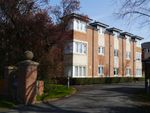 Thumbnail to rent in Louisville, Ponteland, Newcastle Upon Tyne