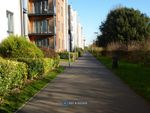 Thumbnail to rent in Sinclair Drive, Basingstoke