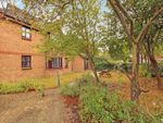 Thumbnail to rent in Courtland Place, Maldon