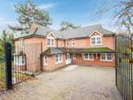 Thumbnail to rent in Arbour Lane, Chelmsford, Essex