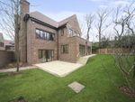 Thumbnail to rent in Chandos Way, Hampstead Garden Suburb, London