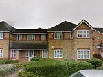 Thumbnail to rent in Larkspur Gardens, Luton