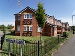 Thumbnail to rent in Fulmar Close, Aldermans Green