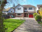 Thumbnail for sale in Park Lane, Ramsden Heath, Billericay, Essex