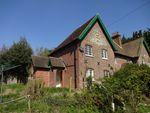 Thumbnail to rent in Holt Street, Nonington
