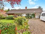 Thumbnail for sale in Cookes Road, Bergh Apton, Norwich