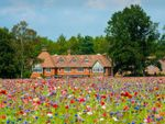 Thumbnail for sale in Frensham Lane, Churt, Farnham