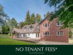 Thumbnail to rent in West Hill, Ottery St. Mary, Devon