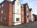 Thumbnail to rent in Fuchsia Grove, Shinfield, Reading
