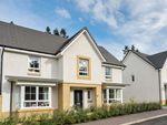 "Thumbnail to rent in ""Falkland"" at Haddington"