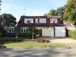Thumbnail to rent in Windmill Hill, Biddenham, Bedford