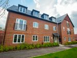 Thumbnail to rent in 6 Primrose Court, Colden Common