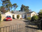 Thumbnail for sale in Shirley Close, West Moors, Ferndown