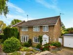 Thumbnail for sale in Musgrave Avenue, East Grinstead