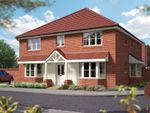 "Thumbnail to rent in ""The Winchester"" at Matthewsgreen Road, Wokingham"