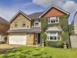 Thumbnail for sale in Holm Grove, Hillingdon