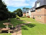 Thumbnail to rent in Clyne Common, Swansea