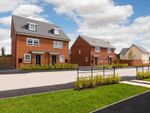 "Thumbnail to rent in ""Queensville"" at Texan Close, Warton, Preston"