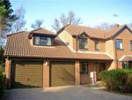 Thumbnail to rent in Martinsyde, Woking, Surrey