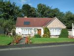 Thumbnail to rent in Lennel Mount, Coldstream