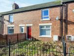 Thumbnail to rent in Hawthorn Street, Easington Colliery, Peterlee