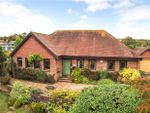 Thumbnail for sale in Chapel Street, East Meon, Petersfield, Hampshire