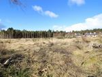 Thumbnail to rent in Arboll Woods Development, By New Geanies, Tain