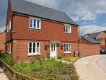 Thumbnail to rent in 9 Otter Walk, Petersfield, Hampshire