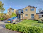 Thumbnail to rent in Brumell Drive, Morpeth