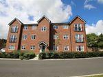 Thumbnail to rent in Aspen House, Penyffordd, Flintshire