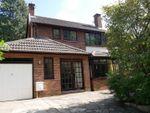 Thumbnail to rent in Trafalgar Close, Ipswich