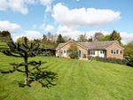 Thumbnail for sale in Willowdene, Mill Lane, Watton At Stone, Hertford