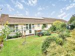 Thumbnail for sale in Pine Coombe, Wicken Green Village, Fakenham