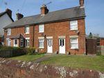 Thumbnail to rent in Worting Road, Worting, Basingstoke