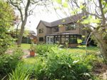 Thumbnail to rent in Swan Grove, Exning, Newmarket