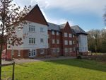 Thumbnail to rent in Rivers Street, Waterlooville