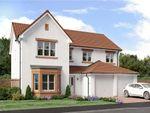 "Thumbnail to rent in ""Colville"" at Dirleton, North Berwick"