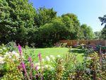 Thumbnail to rent in Salisbury Road, Marlborough, Wiltshire