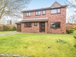 Thumbnail to rent in Old School Close, Leyland